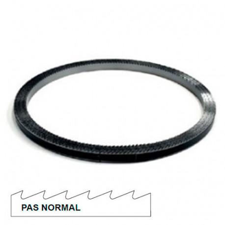 Rouleau de scie à ruban métal 30M x 6 x 0,9 mm x 10 TPI pas normal - Bi-métal M42 - 72020730000 - Hepyc