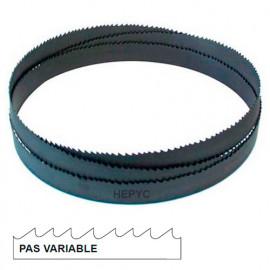 Lame de scie à ruban métal PAE 2450 x 27 x 0,9 mm x 8/12 TPI pas variable - Bi-métal M42 - 73080802450 - Hepyc